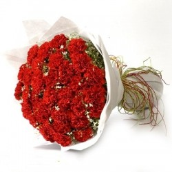 30 Red Carnation.!
