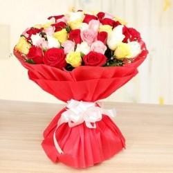 Mix Roses…!