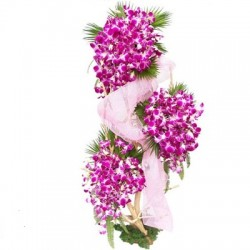 Orchid Stand Arrangement