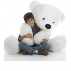 HUGE PLUSH Teddy BEAR (100 CM)